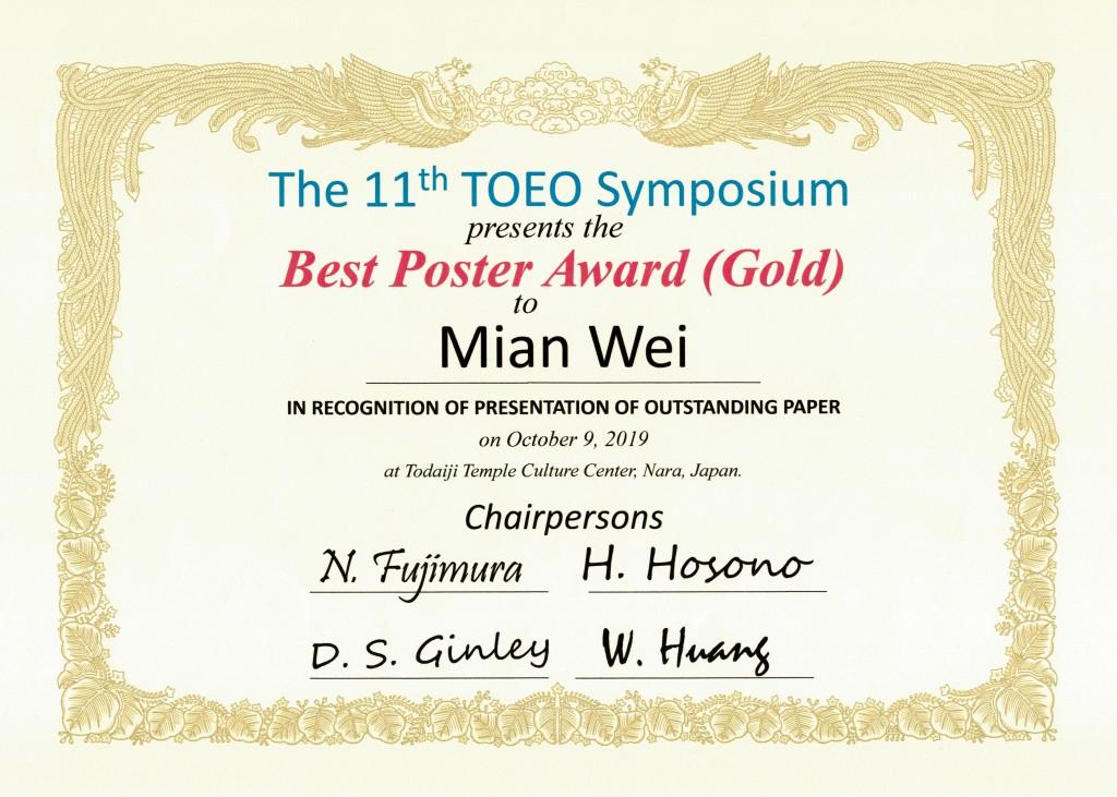 TOEO-11 Wei Gold